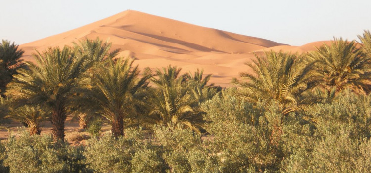 Marokko 2013